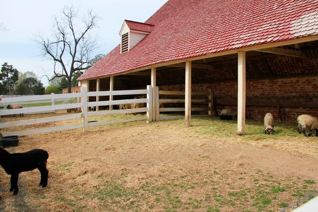 The Farm at Mount Vernon