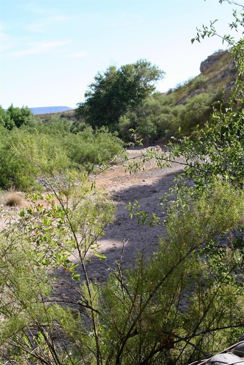 Beaver Creek during Dry Season - Montezuma Castle