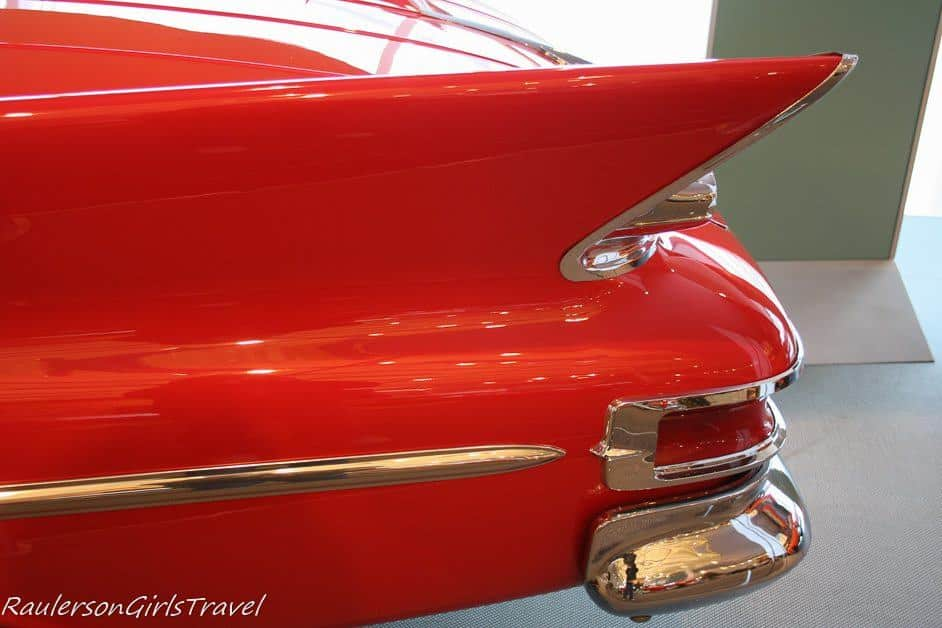 Close up of Red Tailfin