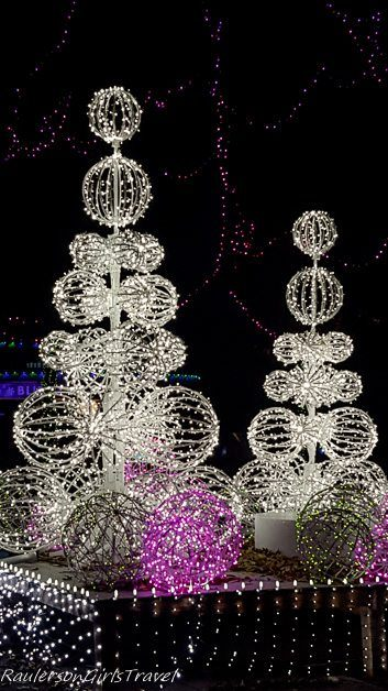 White Holiday lights as trees and bushes at Garden Glow at Missouri Botanical Gardens