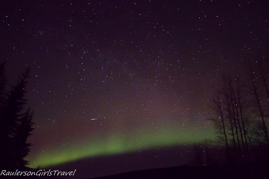 Trees silhouetted against a purple and green Northern Lights background with a shooting star