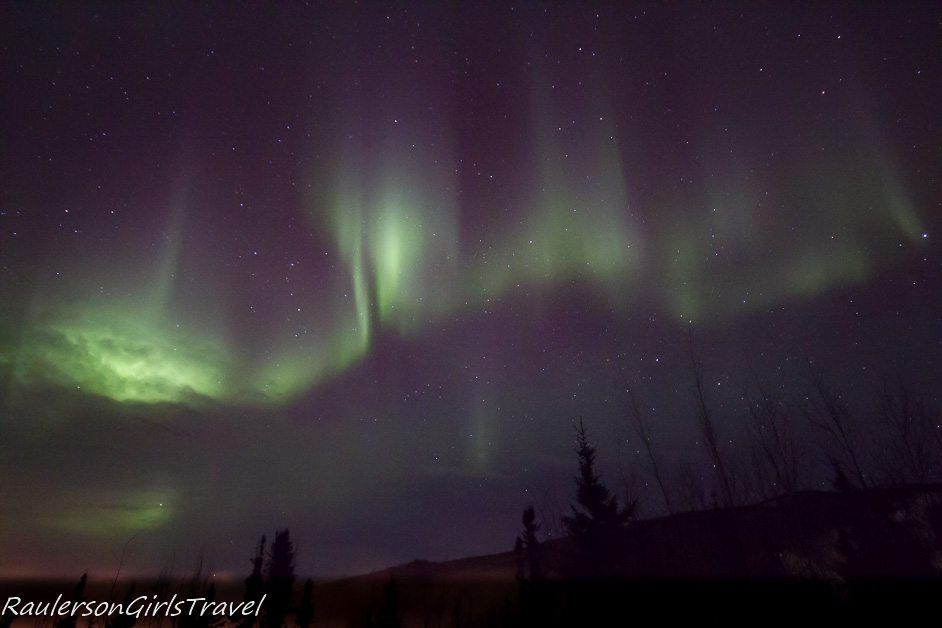 Green Northern Light pillars with tree silhouettes