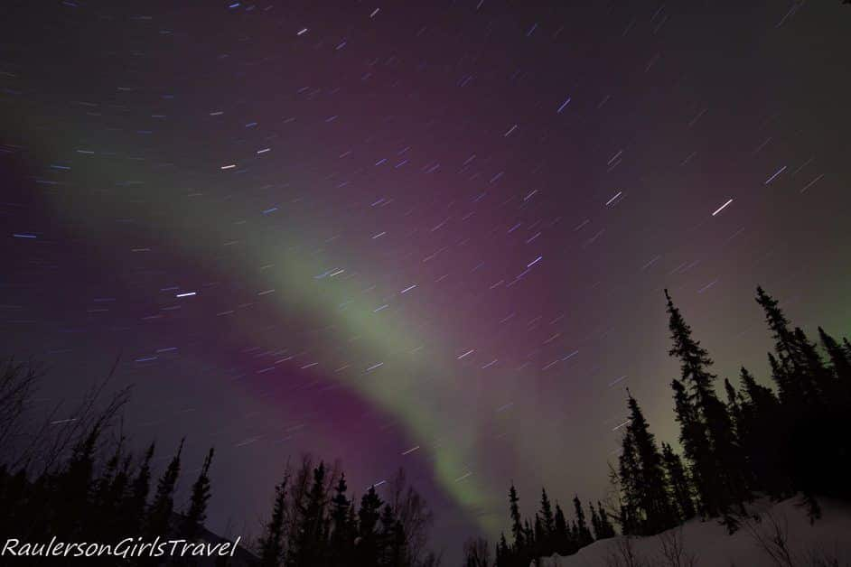 Star Trails with purple and green northern lights behind evergreen trees