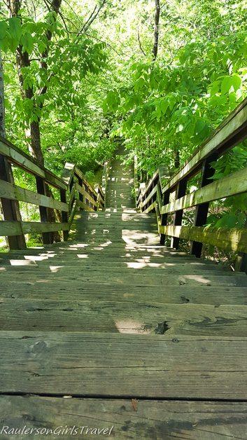 stairs in Hayden Falls Park