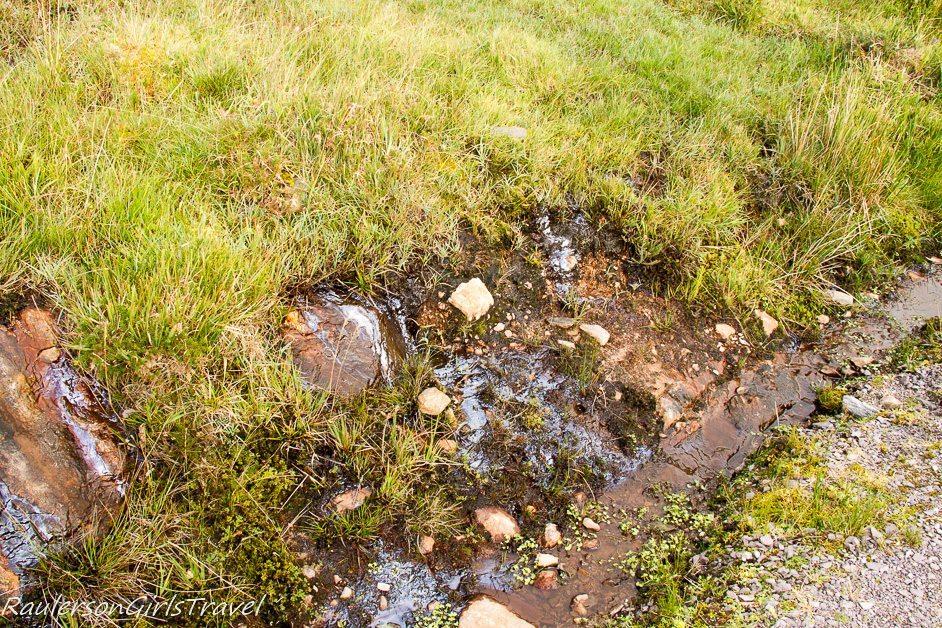 Peat fuel in Irish soil
