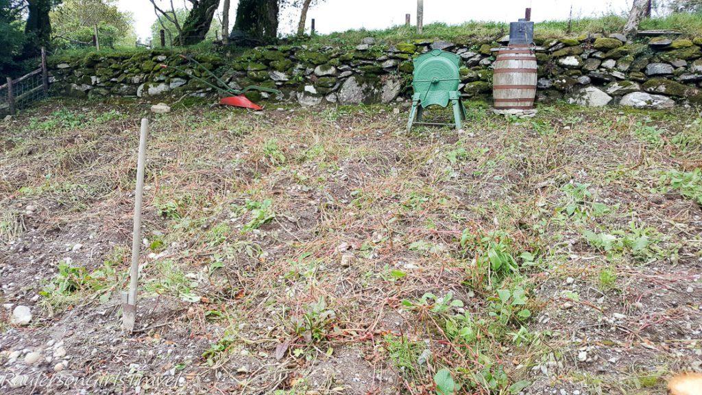 The Garden at Molly Gallivan's Farm