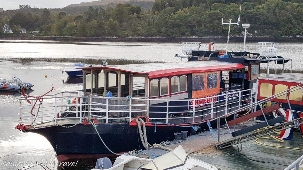 Seafari boat on Kenmare Bay