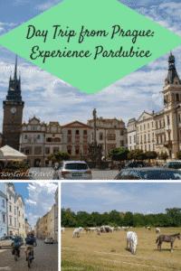 Pardubice pin
