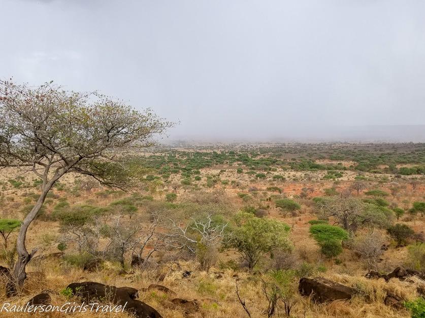Storm coming through Tarangire National Park