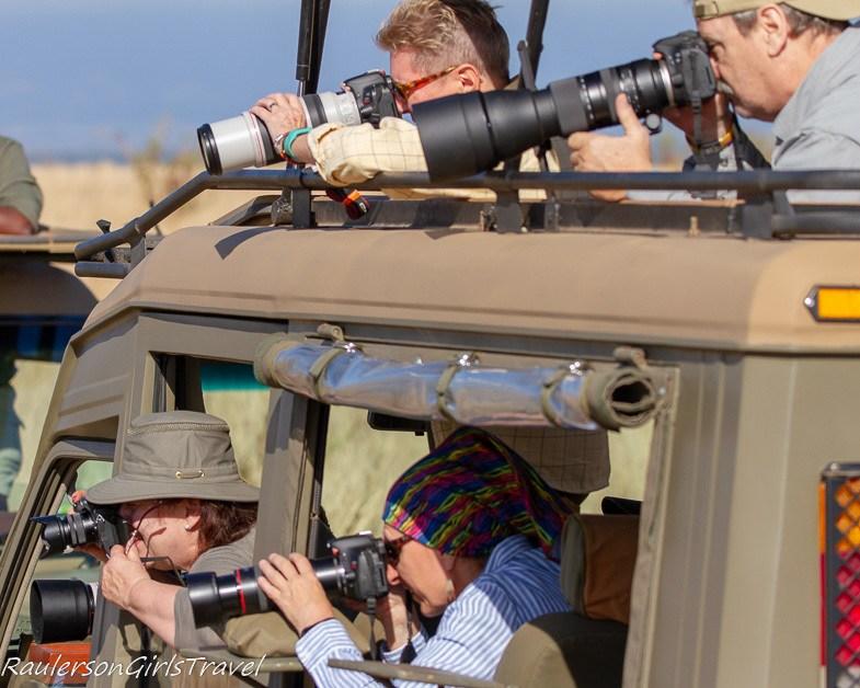 Photographers shooting animals