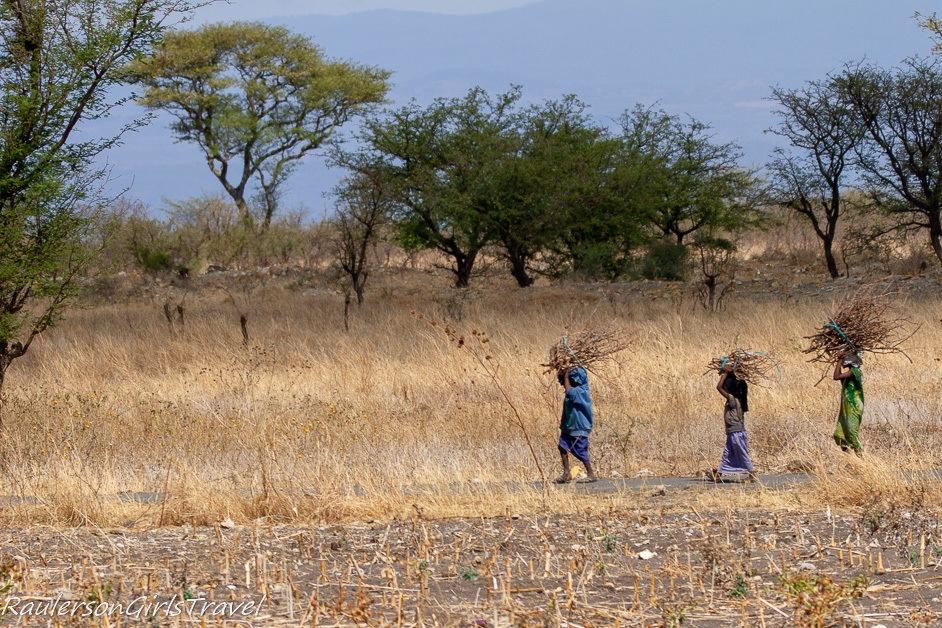Maasai carrying sticks