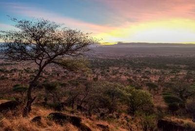 Tarangire National Park Sunrise