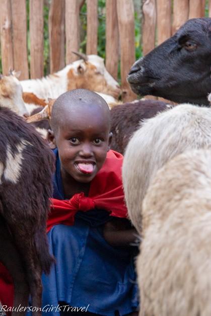 Hiding among the goats