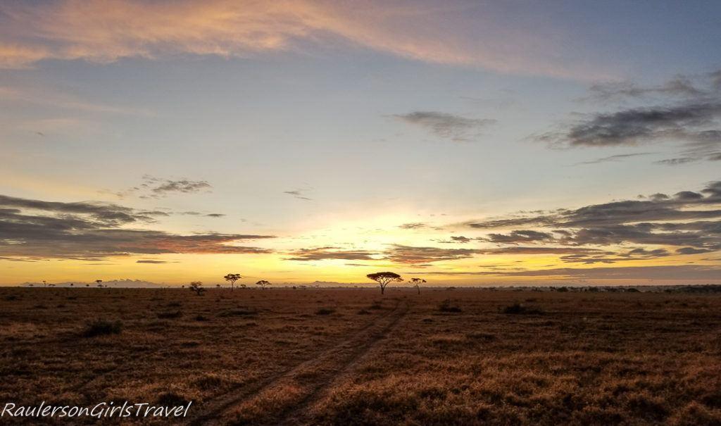 Serengeti Sunrise 4
