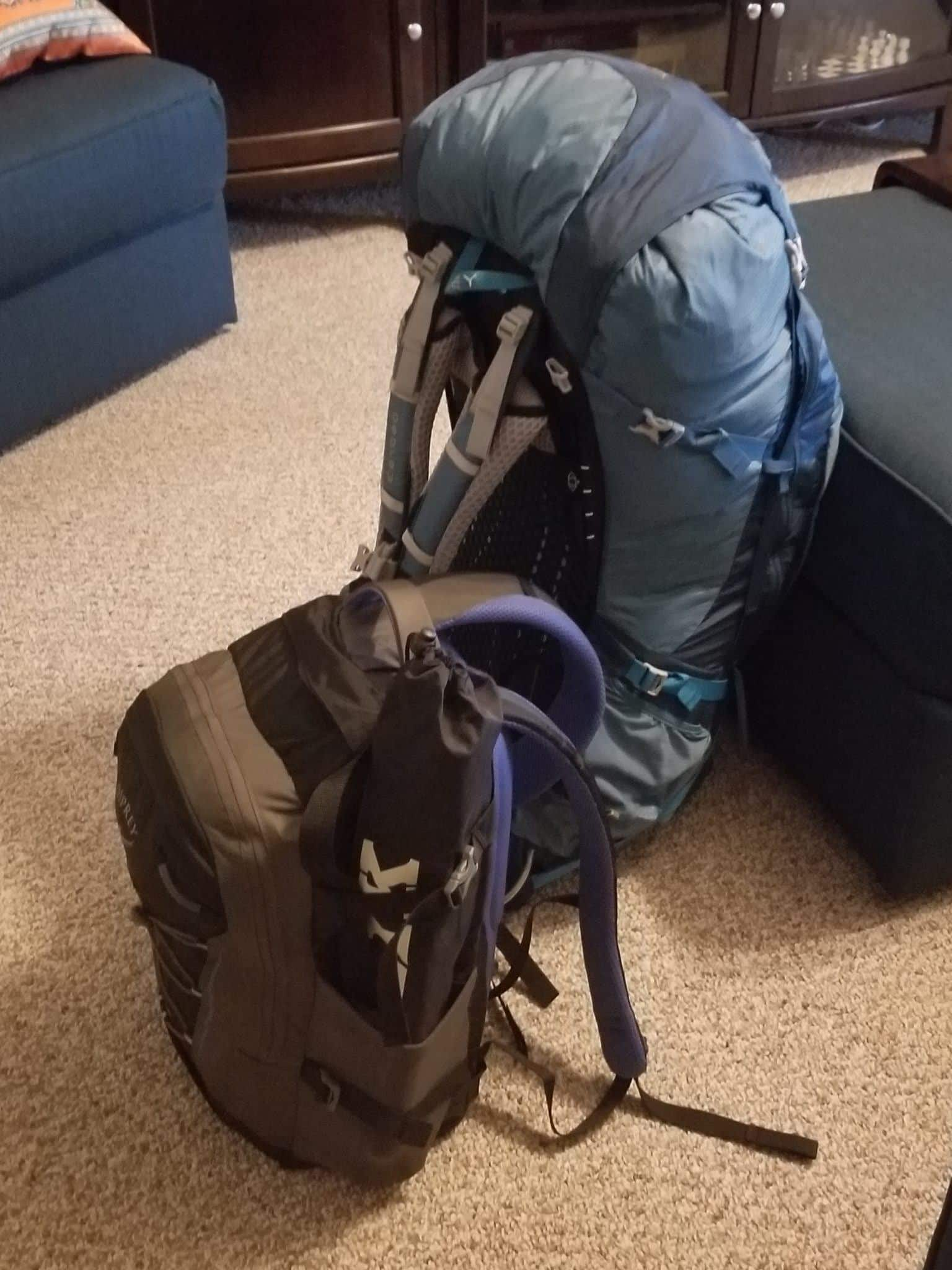 Backpack and Carry on Bag