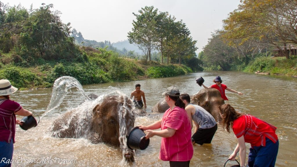 Elephants getting bathed in the river
