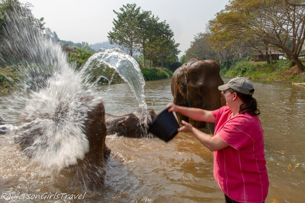 Heather throwing water on an elephant