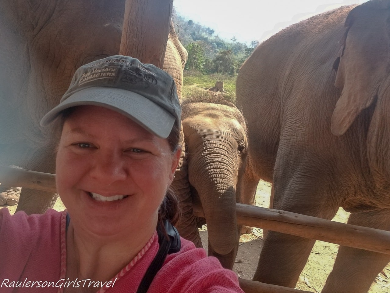 Selfie with the elephants