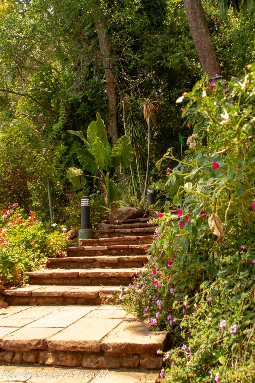 Steps leading into the Tropical Rain Forest