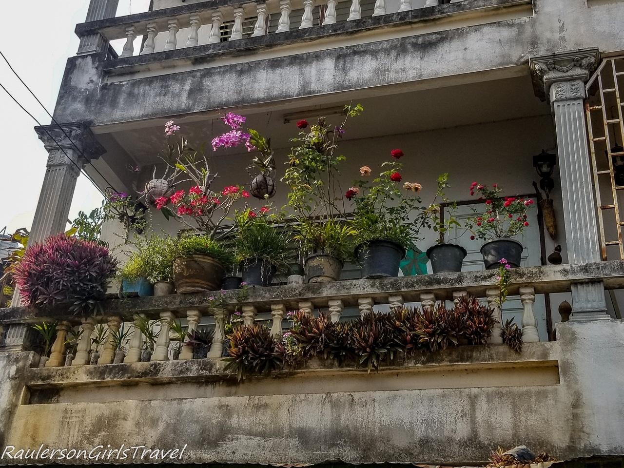 Flower Garden on Balcony