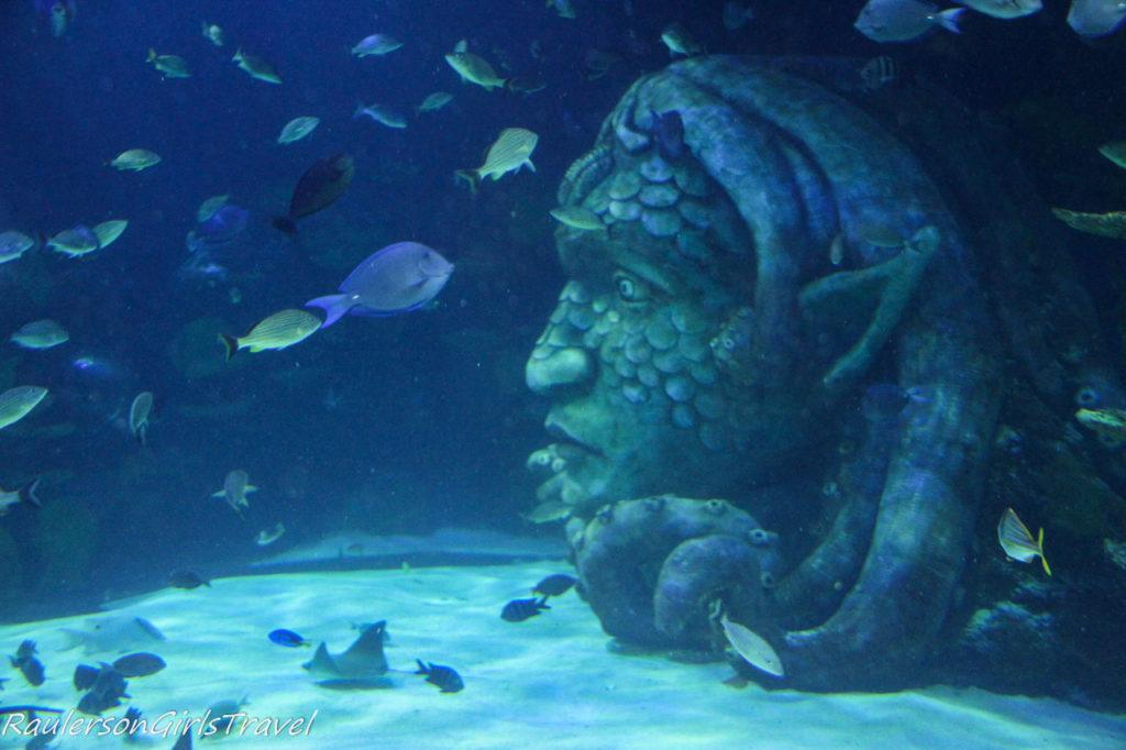 Main exhibit at Seat Life Aquarium