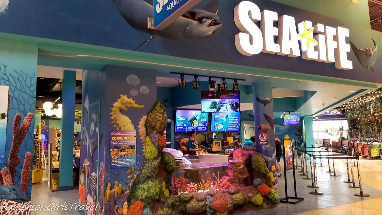 Sea Life Michigan Aquarium at Great Lakes Crossing Outlets