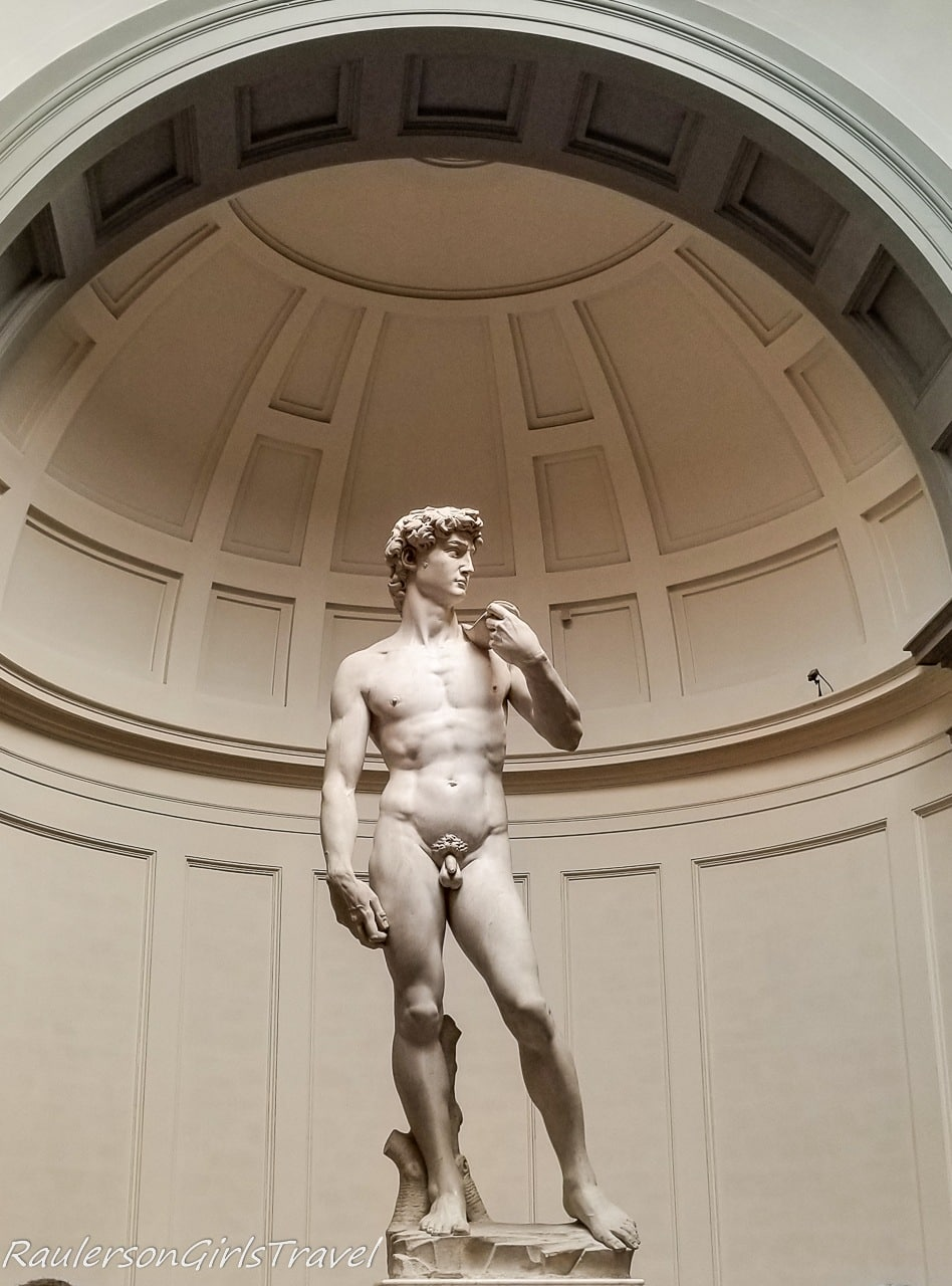 Michelangelo's David at the Galleria dell'Accademia