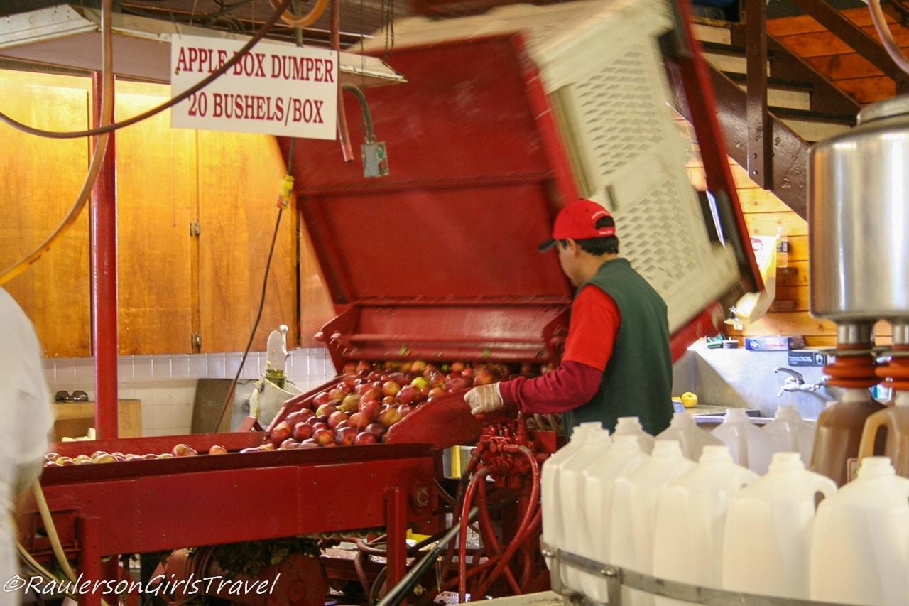 Apples at Blake's Cider Mill - Michigan Cider Mills