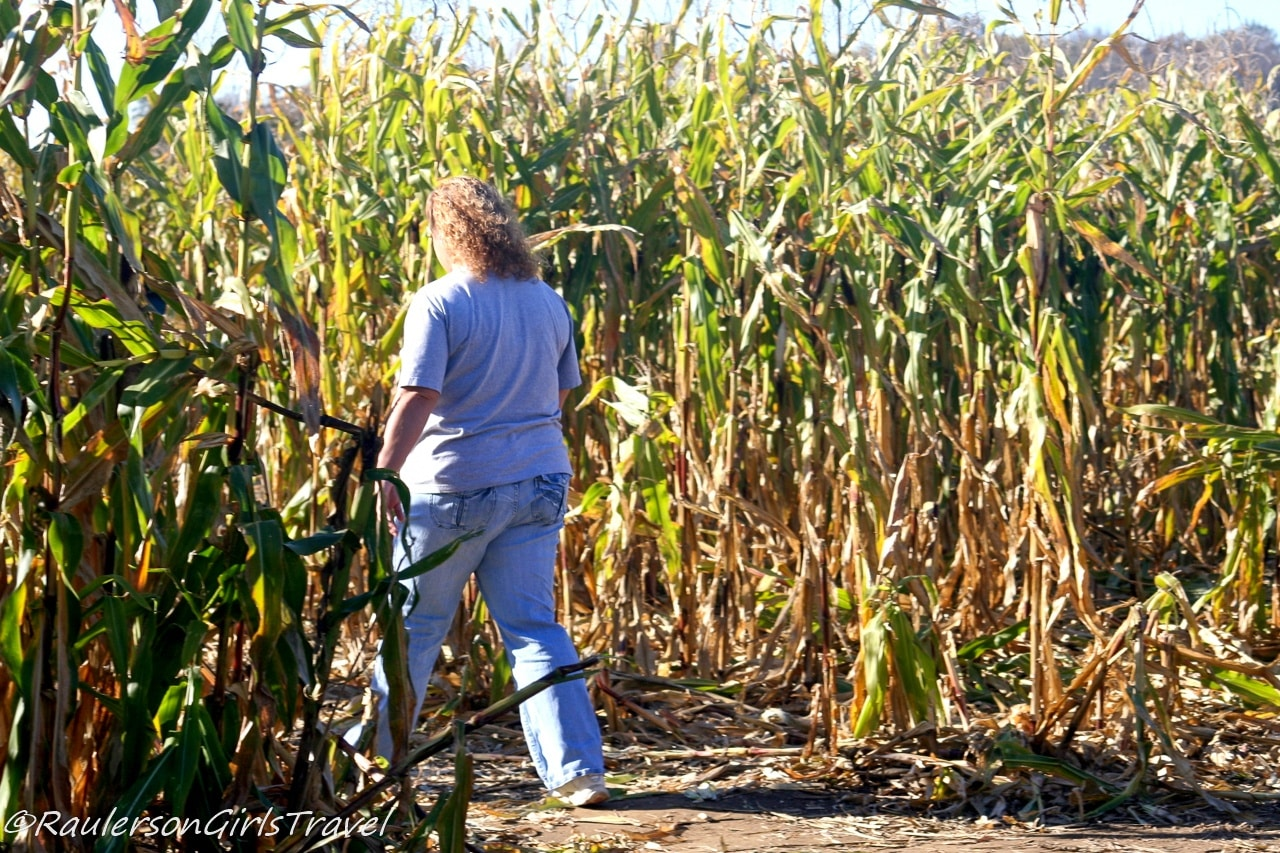 Theresa walking into the Giant Corn Maze at Blake's Cider Mill - Michigan Cider Mills