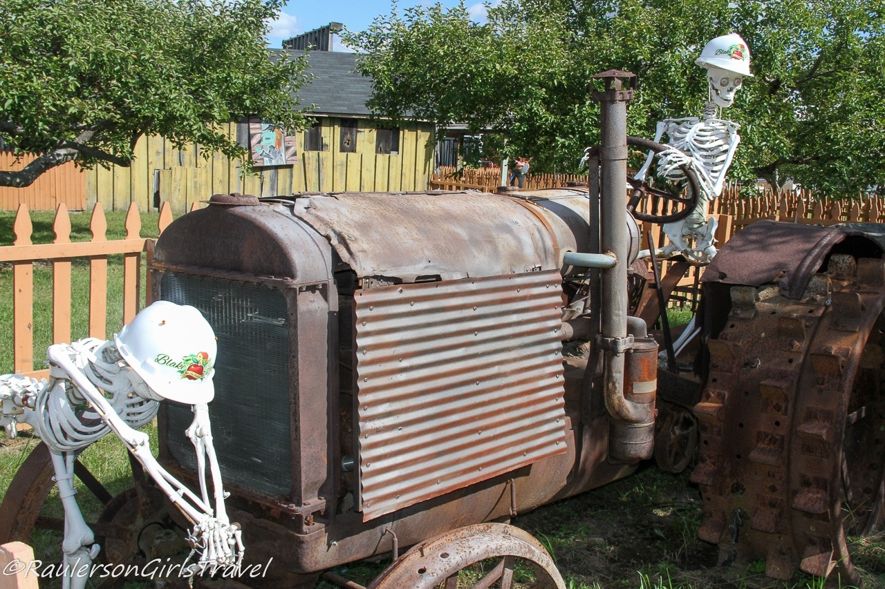 Skeletons on a tractor at Blake's Cider Mill