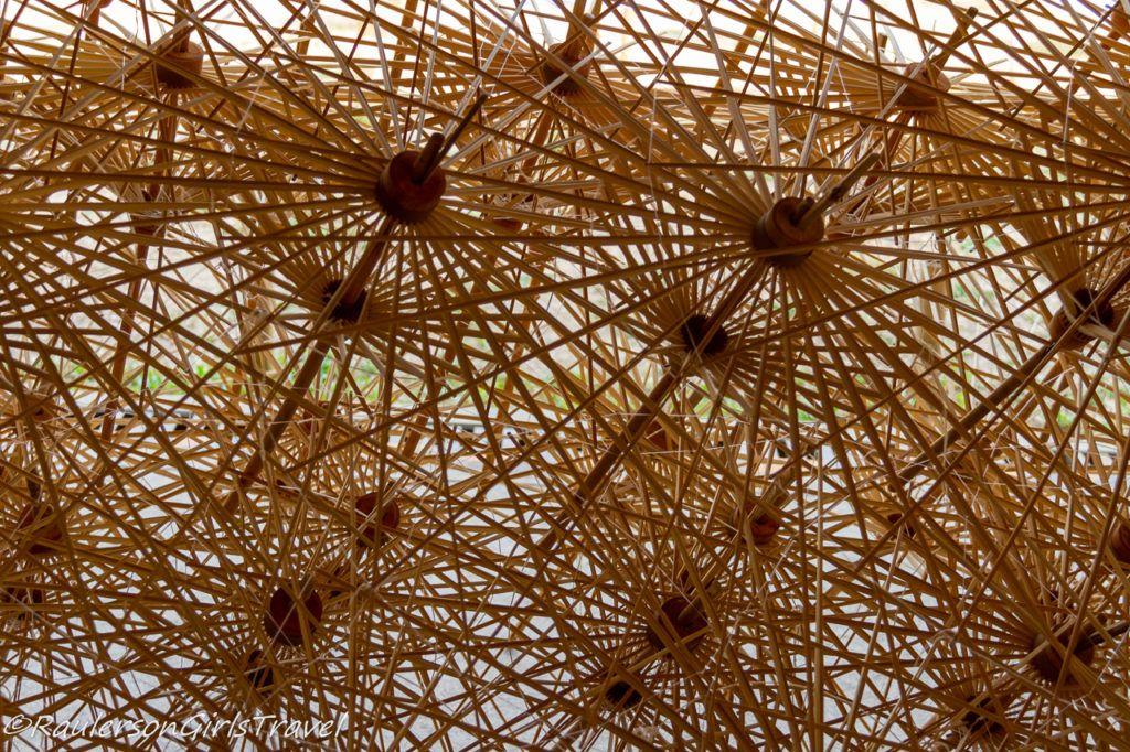 Opened Bamboo Umbrella Struts