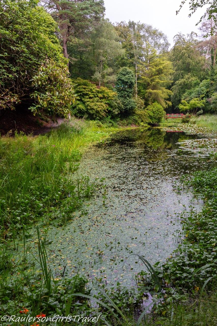 Pond in Portmeirion Village