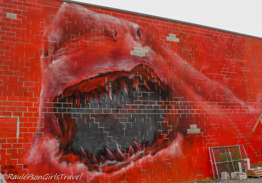 2015 Murals in the Market - Red Shark