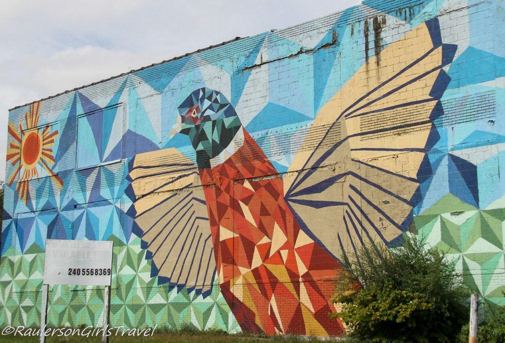 Corktown Pheasant