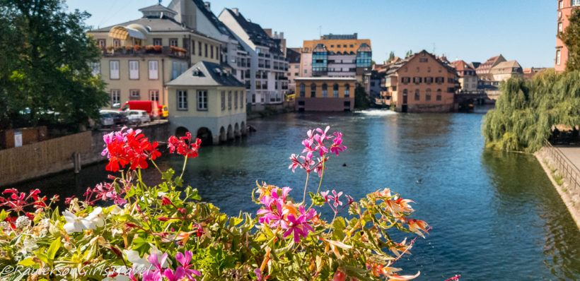 Pink and red flowers by canal in Strasbourg