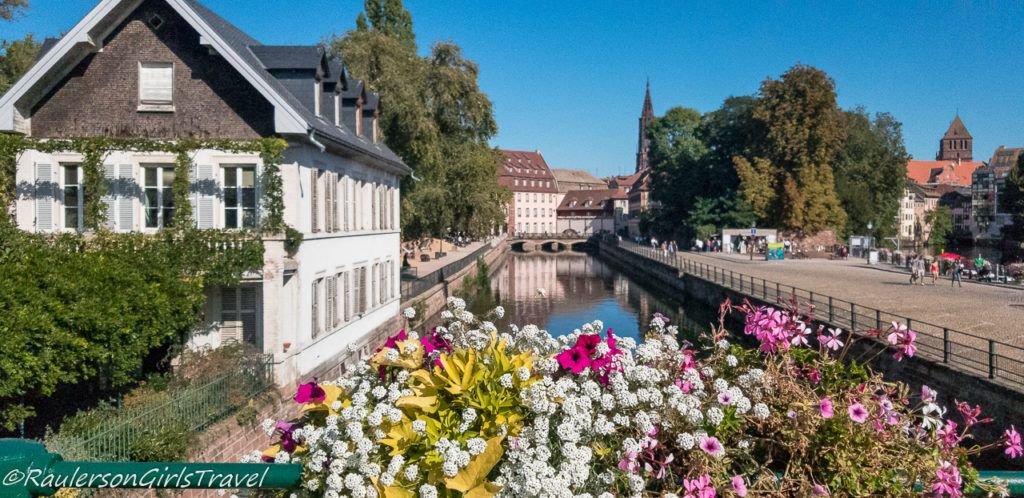 Colorful flowers by a canal in Strasbourg