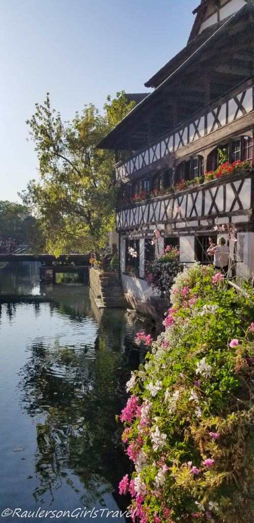 Pink and white flowers by a timber-framed house along the canal in Strasbourg