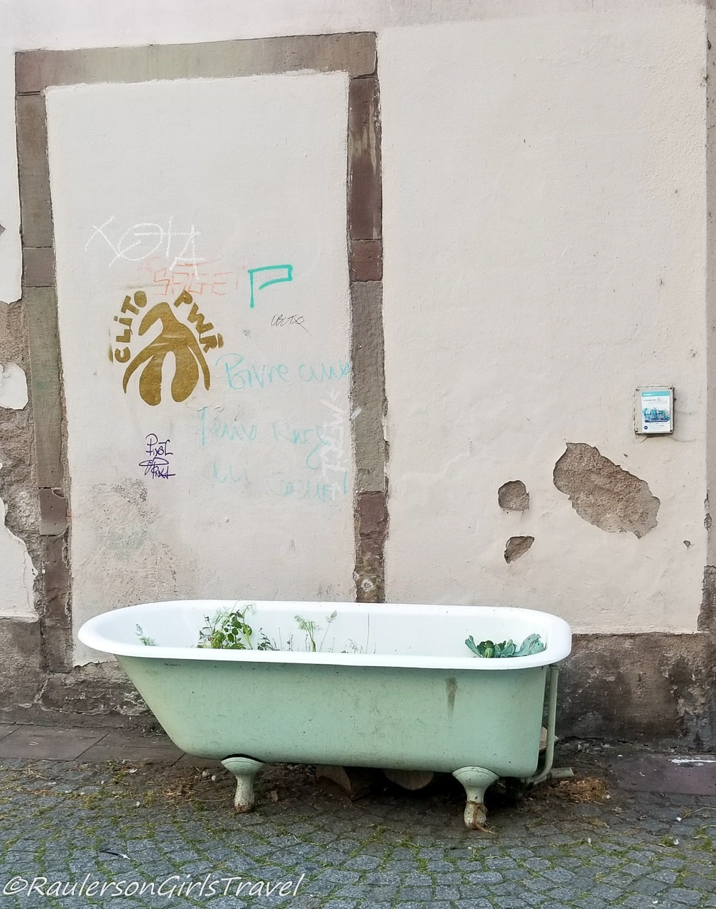 Bathtub with plants growing in it in Strasbourg