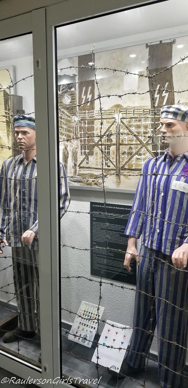 Display of Jewish prisoners at MM Park France