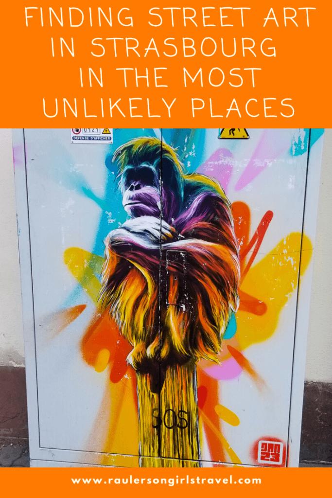 Street Art in Strasbourg Pinterest Pin
