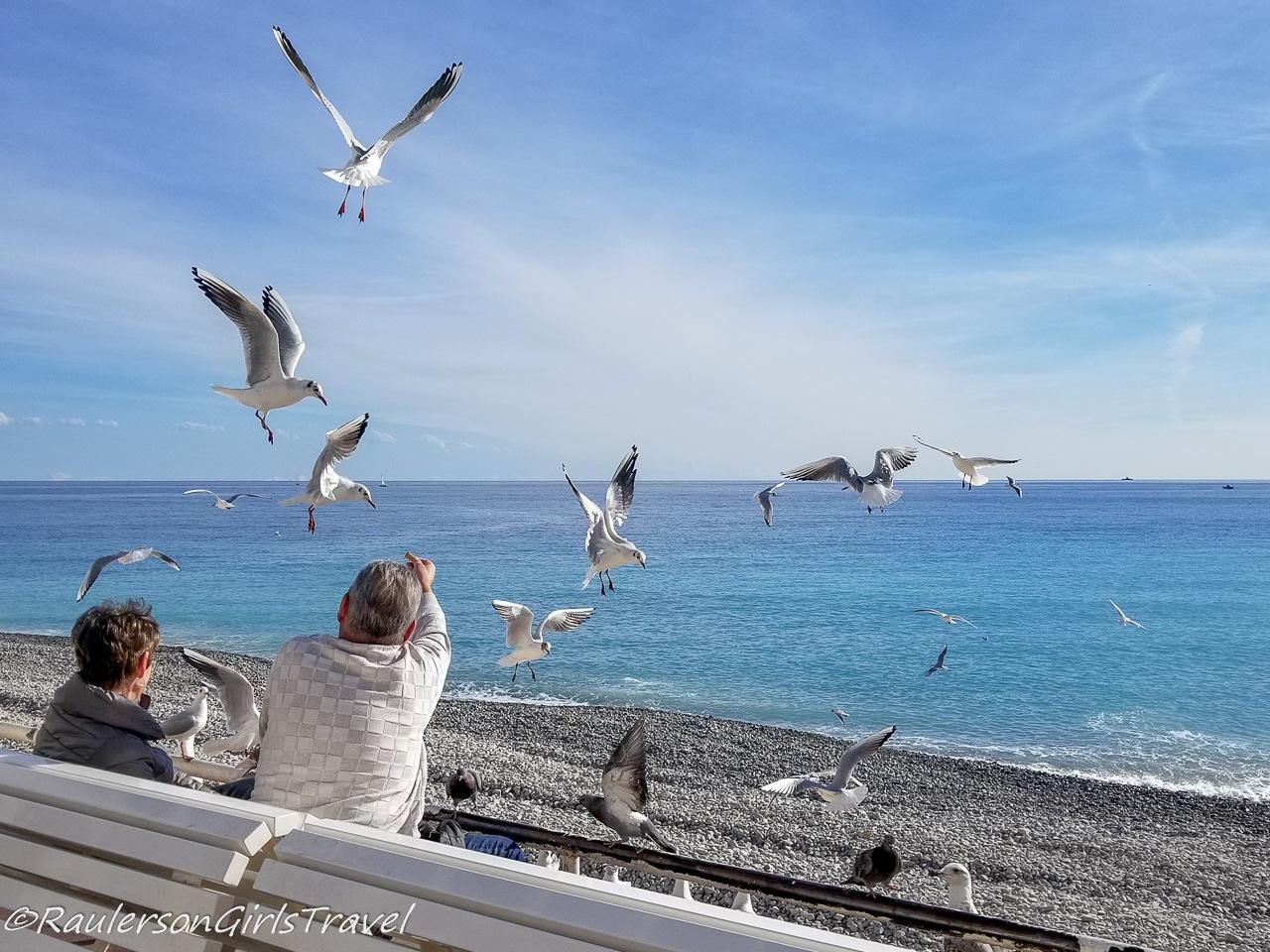 Couple feeding seagulls in Nice, France