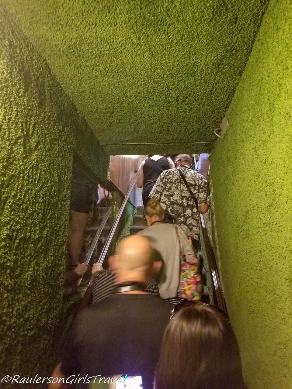 Green Shag Staircase