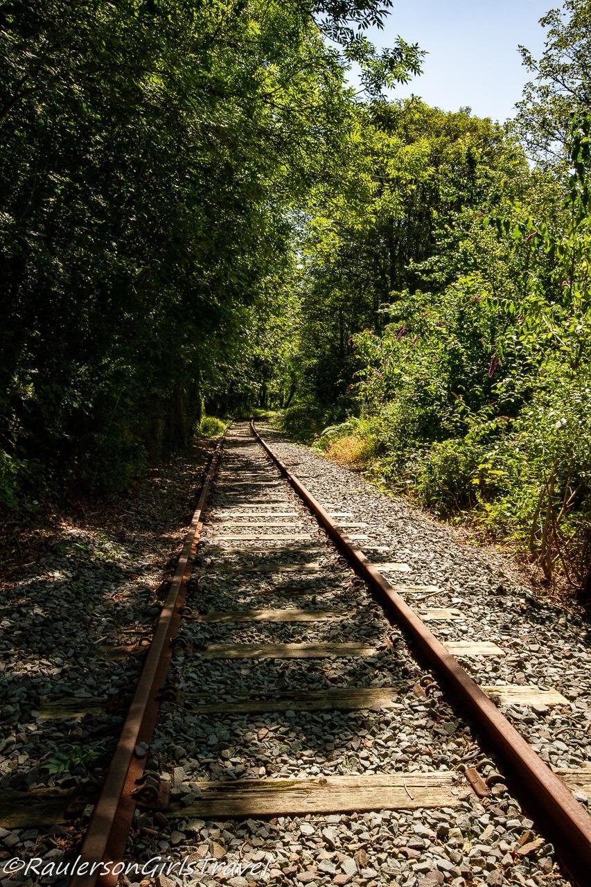 Train tracks in the Dingle