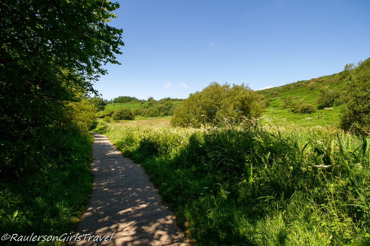 Pathway in the Dingle Nature Reserve