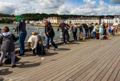 Families crabbing off of Beaumaris Pier