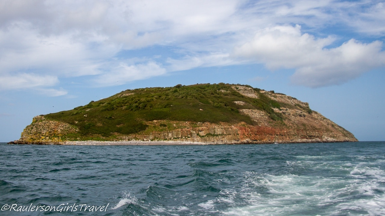 South view of Puffin Island