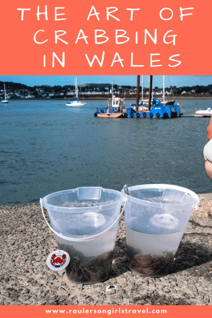 Crabbing in Wales Pinterest Pin