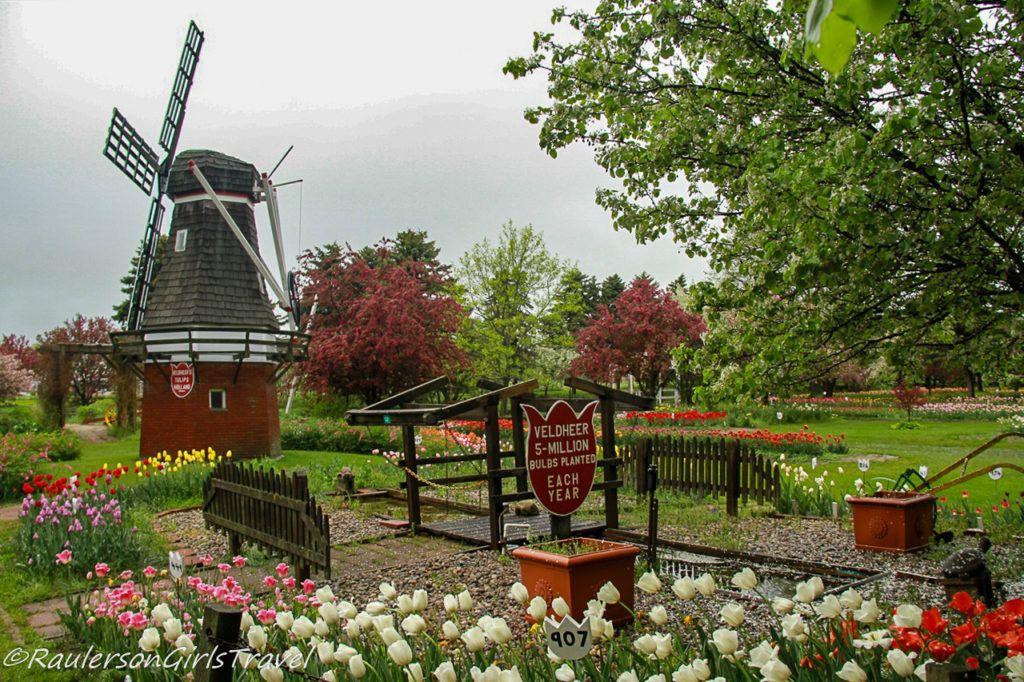 Veldheer Tulip Farm