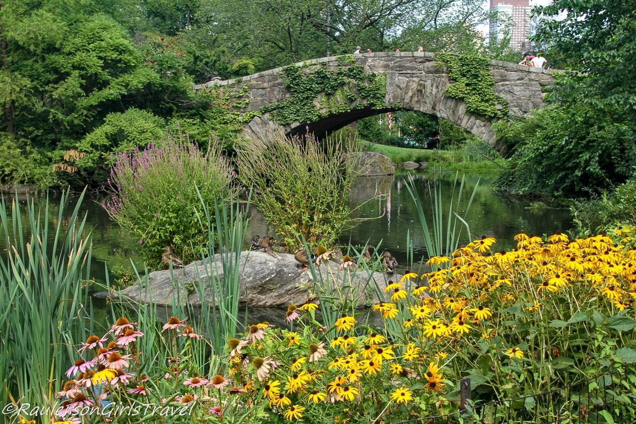 Stone bridge in Central Park, New York City