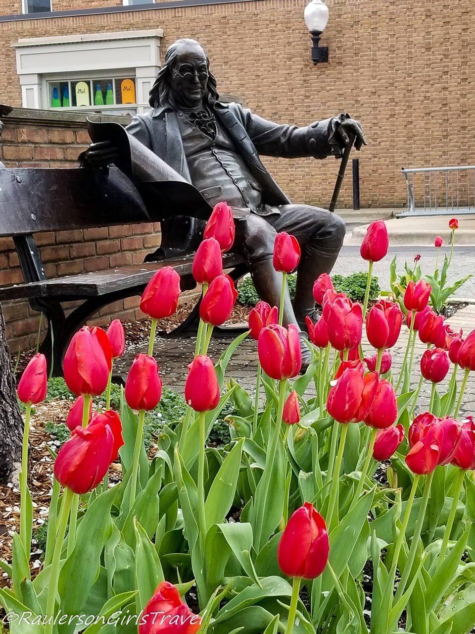 Red tulips in front of Ben Franklin statue